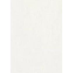 Mist pearl cardboard - 250 g, A4