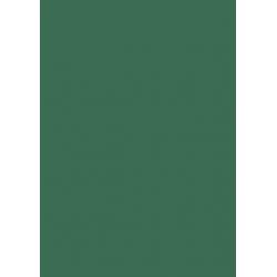 Dark green cardboard - 300g