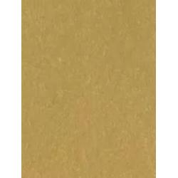 Golden paper A4