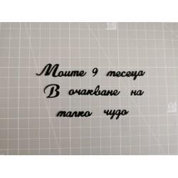 Cutting dies in Bulgarian - Set soon I'll be a mommy