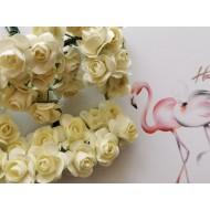 Paper flowers 12 pcs.- champagne
