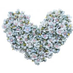 Daisy Flower Head - 50 pcs
