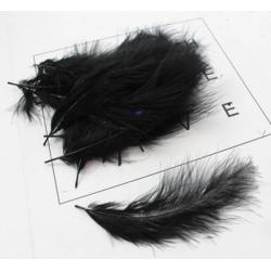 Feathers - 50 PCS