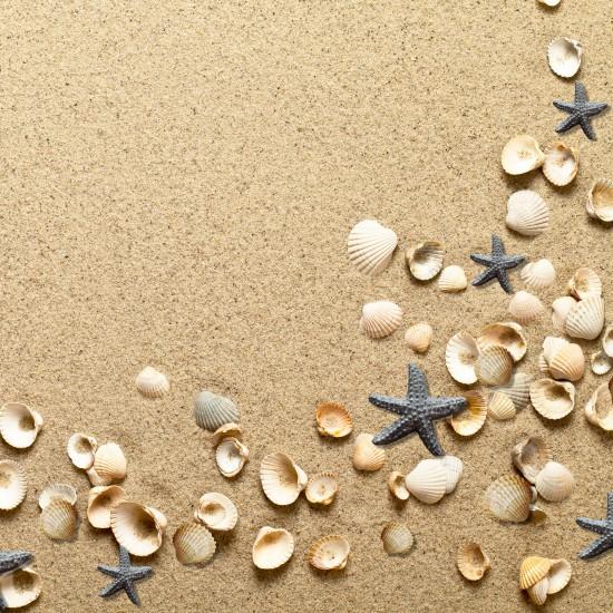 Дизайнерски картони - Морски плаж