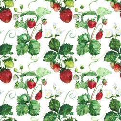 Дизайнерски картони - Акварели на ягоди