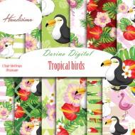 Design paper pack - Tropical Birds - 8х8  inches